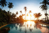 Beach in the tropics on sunset — Foto Stock