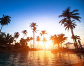 Beach in the tropics on sunset — 图库照片