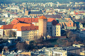 Royal Wawel castle with park — Stock Photo