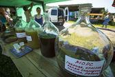 During folk festival Ivan-Tea — Stock Photo