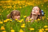 Sisters blowing dandelion seeds away — Stock Photo