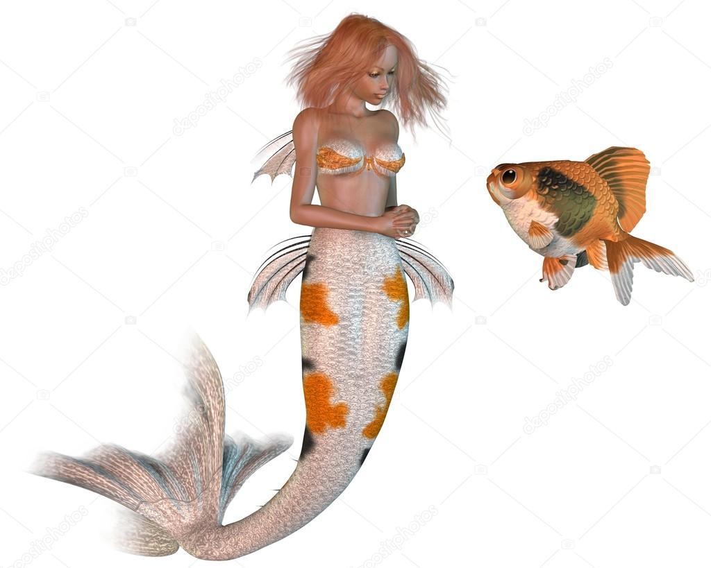 Muster meerjungfrau koi und goldfische stockfoto 28106081 for Koi und goldfische
