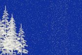 Snow and Christmas Trees Background — Stock Photo
