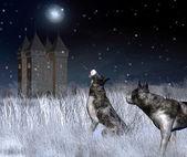Einsame burg im winter mondlicht — Stockfoto