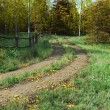 Country Lane in Autumn (fall) — Stock Photo