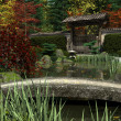 Japanese Garden and Koi Pond, Autumn — Stock Photo