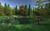 Small Woodland Lake with Jetty — Stock Photo