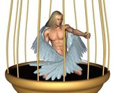 Captive Male Angel in Gold Cage — Stock Photo