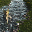 Stock Photo: Fairy paddling in stream