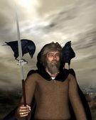 Odin the Wanderer - portrait — Stock Photo