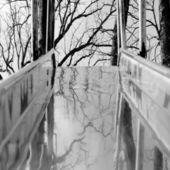 Abstracto blanco y negro. — Foto de Stock