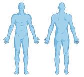 Erkek vücut - insan vücudunun anahat - anterior ve posterior görünümü - tam vücut şekilleri — Stok fotoğraf