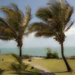 Strand in Pipa, Brasilien — Stockfoto