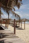 Beach in Pipa, Brazil — Stock Photo