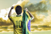 Brazilian fan celebrates on a wonderful day — Foto de Stock