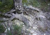 Happy tree — Stock Photo