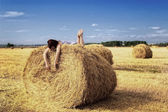 On the haystack — Stock Photo