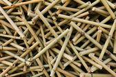 Bambu — Fotografia Stock