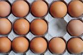鸡蛋在纸箱 — 图库照片