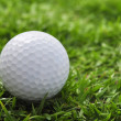 Stock Photo: Golf ball and grass