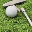 Golf ball and putter — Stock Photo #41053923