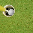 Stock Photo: Golf hole in one