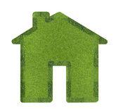 House grass — Stock Photo