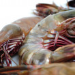 Stock Photo: Tiger shrimp
