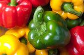 Barevné papriky — Stock fotografie
