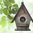 Bird house — Stock Photo #41832711