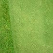 Putting Green — Foto de stock #41837205
