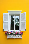 Window and flowerbox — Stock Photo