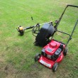 Mower — Stock Photo #41853451