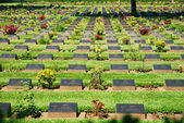 War Cemetery at Kanchanaburi — Foto de Stock