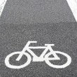 Bike lane — Stock Photo #41876905