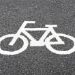 Bike lane — Stock Photo #41876921