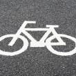 Bike lane — Stock Photo #41883457