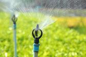 Agricultural Sprinkler — Stock Photo