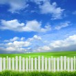 White fence — Stock Photo #42393883