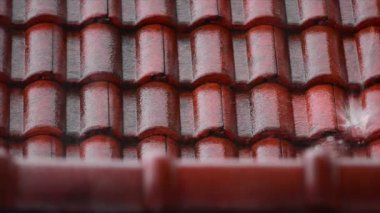 Tiled roof with rain — Stock Video