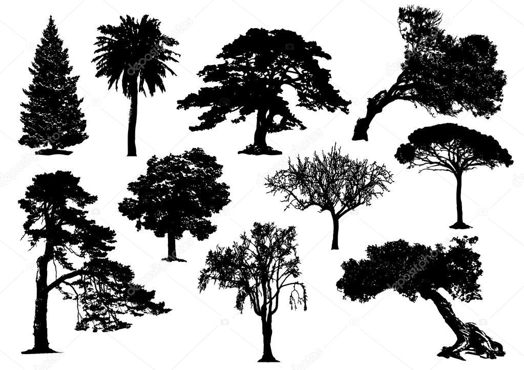 木のシルエットの 001 ストックベクター 169 Yyanng 29442633