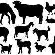 Farm animals silhouettes — Stock Vector