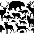 Forest animal silhouettes — Stock Vector