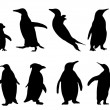Penguin silhouettes — Stock Vector #49275713