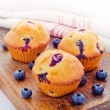 Fresh baked blueberry muffins — ストック写真