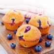 Fresh baked blueberry muffins - 图库照片