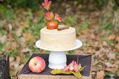 Jablečný dort — Stock fotografie