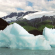 Icebergs on Portage Lake Alaska — Stock Photo