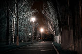 Park path at night — Stock Photo
