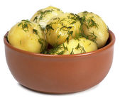 Boiled potatoes — Stock Photo